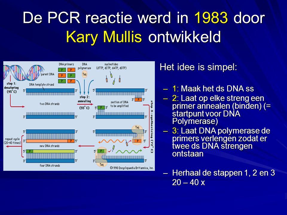 De PCR reactie werd in 1983 door Kary Mullis ontwikkeld Kary Mullis kreeg voor de ontwikkeling van de PCR in 1993 de Nobelprijs voor Chemie Het idee i