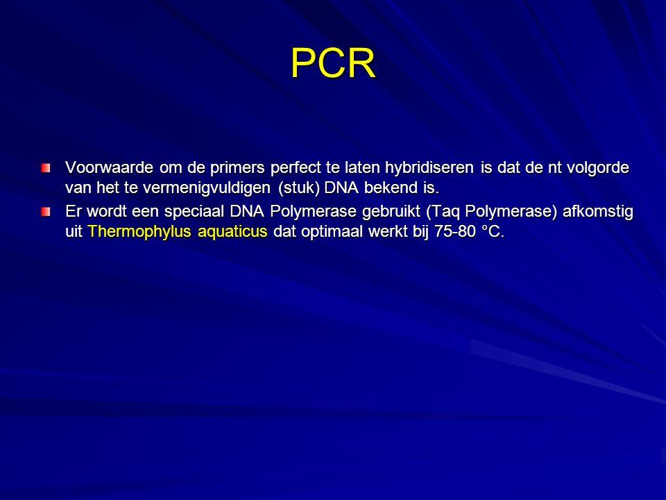 PCR Voorwaarde om de primers perfect te laten hybridiseren is dat de nt volgorde van het te vermenigvuldigen (stuk) DNA bekend is. Er wordt een specia