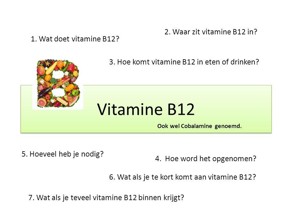 Vitamine B12 1.Wat doet vitamine B12. 2. Waar zit vitamine B12 in.