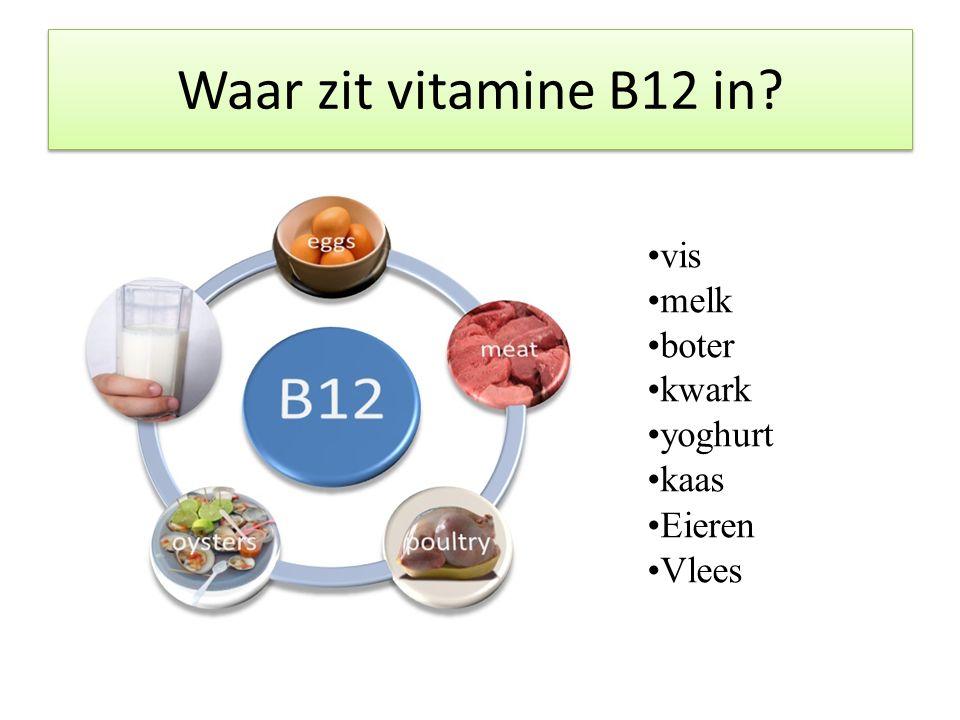 Waar zit vitamine B12 in? vis melk boter kwark yoghurt kaas Eieren Vlees