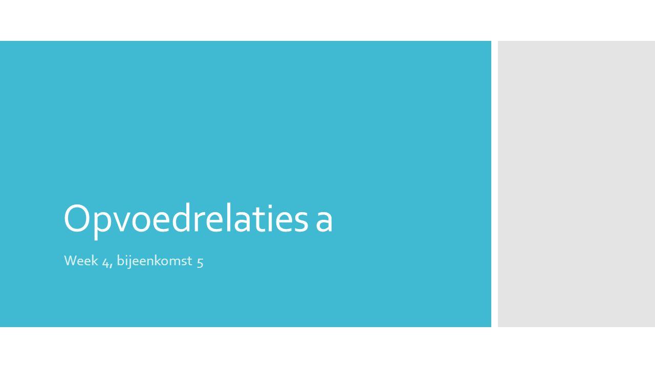 Programma  Literatuur (30 min)  Introductie verwerkingsopdracht plus toelichting criteria presentaties (10 min)  Ontwikkelen aanpak die 'past' bij de systeembenadering (140 min incl.