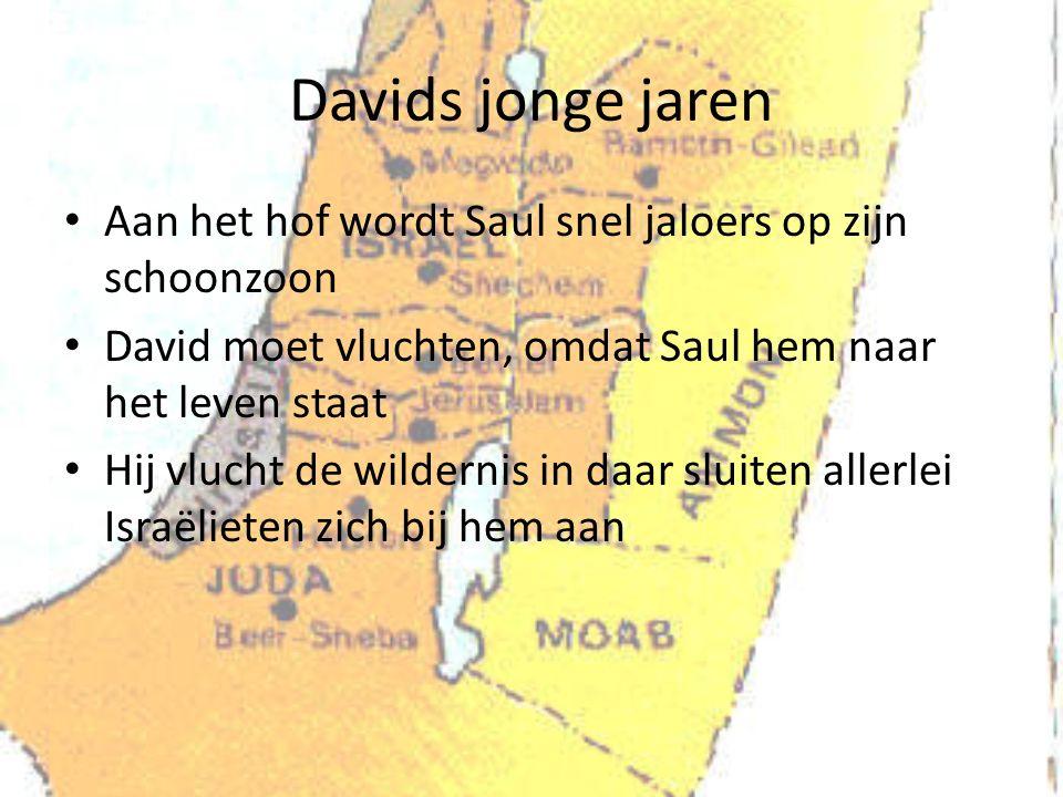 Davids jonge jaren Aan het hof wordt Saul snel jaloers op zijn schoonzoon David moet vluchten, omdat Saul hem naar het leven staat Hij vlucht de wildernis in daar sluiten allerlei Israëlieten zich bij hem aan