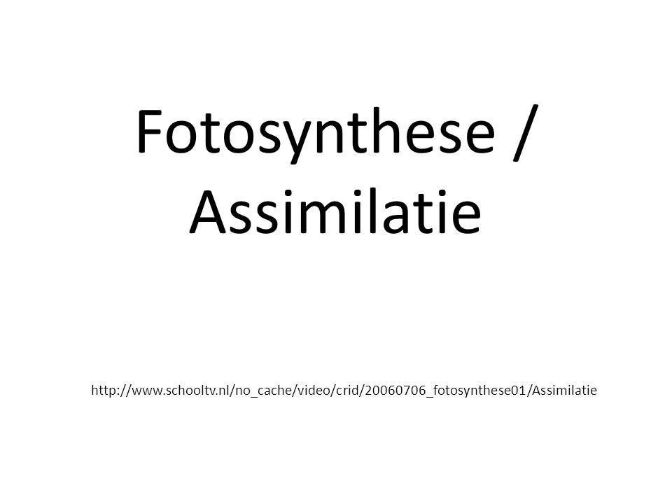 Fotosynthese / Assimilatie http://www.schooltv.nl/no_cache/video/crid/20060706_fotosynthese01/Assimilatie