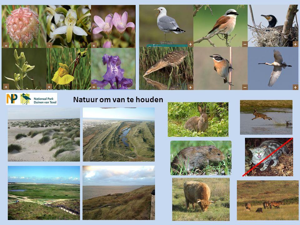 DE VIER PIJLERS VAN HET NATIONALE PARKENBELEID 1.natuurbehoud en natuurontwikkeling, 2.
