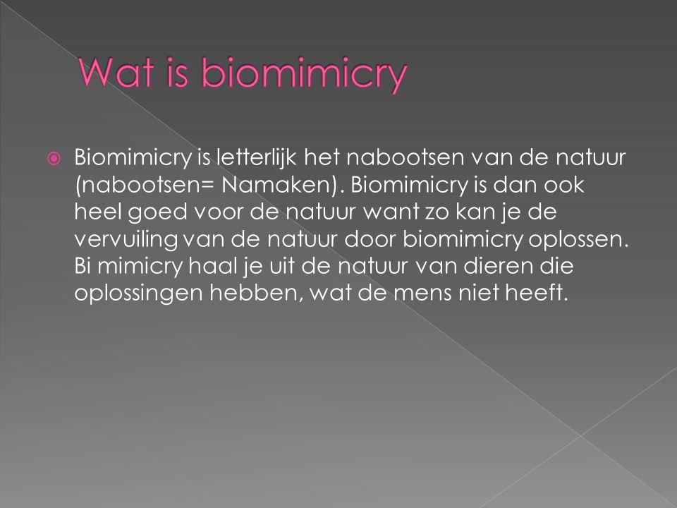  Biomimicry is letterlijk het nabootsen van de natuur (nabootsen= Namaken).