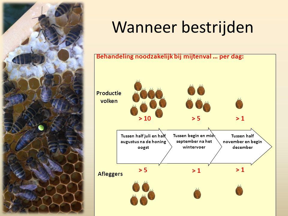 Wanneer bestrijden Bienen Wirtschaftsvölker Behandeling noodzakelijk bij mijtenval … per dag: Productie volken > 10> 5> 1 > 5 > 1 Afleggers Tussen half november en begin december Tussen begin en mid- september na het wintervoer Tussen half juli en half augustus na de honing oogst