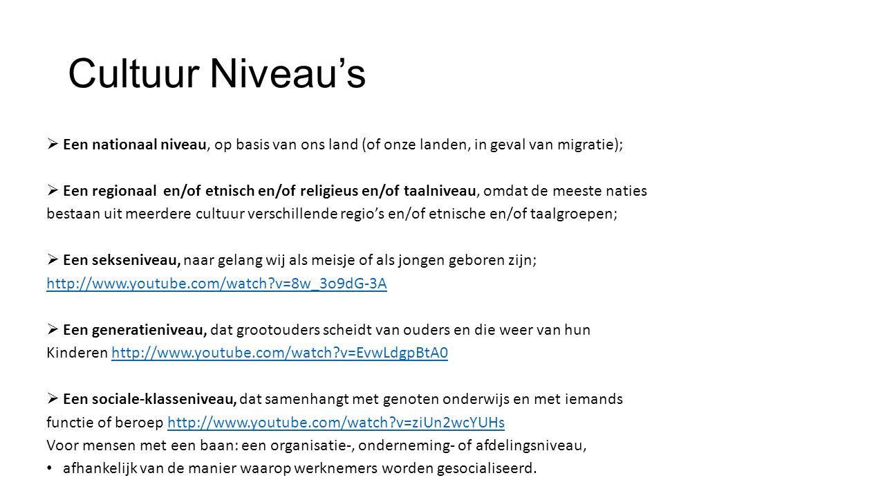 Cultuur Niveau's  Een nationaal niveau, op basis van ons land (of onze landen, in geval van migratie);  Een regionaal en/of etnisch en/of religieus