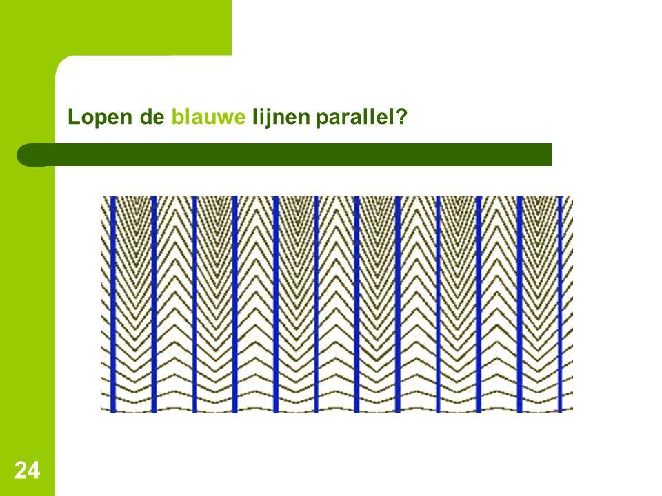 24 Lopen de blauwe lijnen parallel?