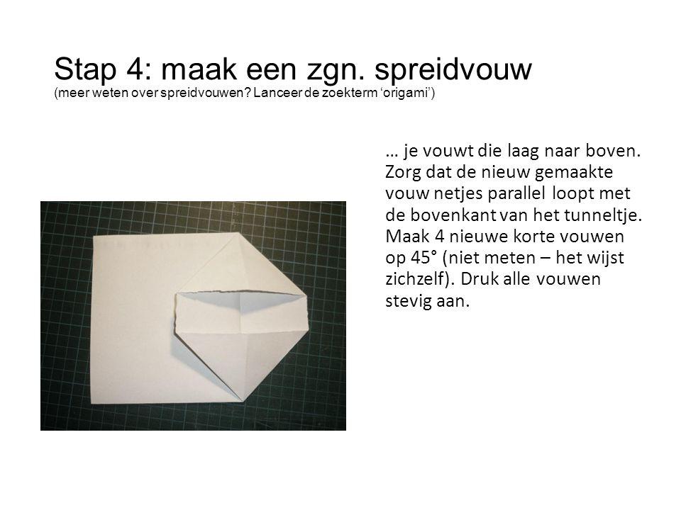 Stap 4: maak een zgn. spreidvouw (meer weten over spreidvouwen? Lanceer de zoekterm 'origami') … je vouwt die laag naar boven. Zorg dat de nieuw gemaa
