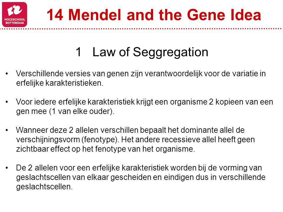 14 Mendel and the Gene Idea 1 Law of Seggregation Verschillende versies van genen zijn verantwoordelijk voor de variatie in erfelijke karakteristieken