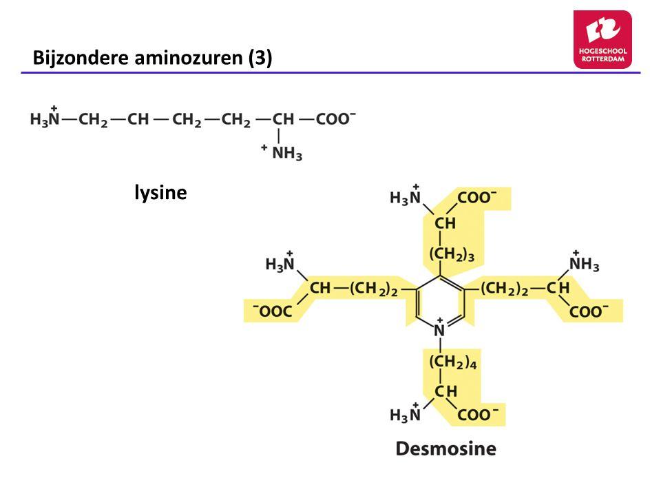 Bijzondere aminozuren (3) lysine