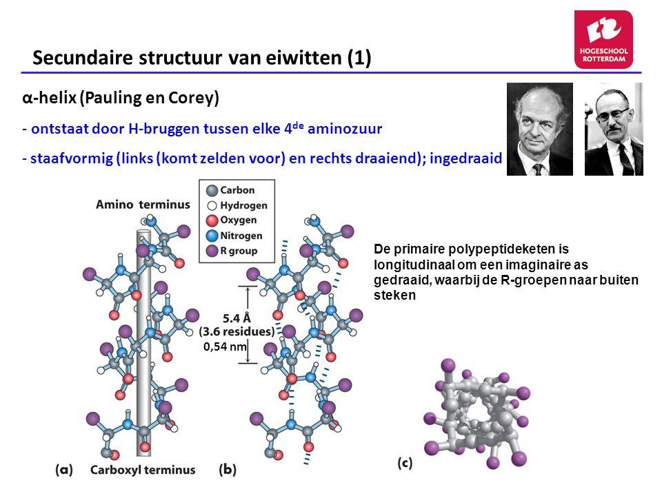 Secundaire structuur van eiwitten (1) α-helix (Pauling en Corey) - ontstaat door H-bruggen tussen elke 4 de aminozuur - staafvormig (links (komt zelden voor) en rechts draaiend); ingedraaid De primaire polypeptideketen is longitudinaal om een imaginaire as gedraaid, waarbij de R-groepen naar buiten steken 0,54 nm