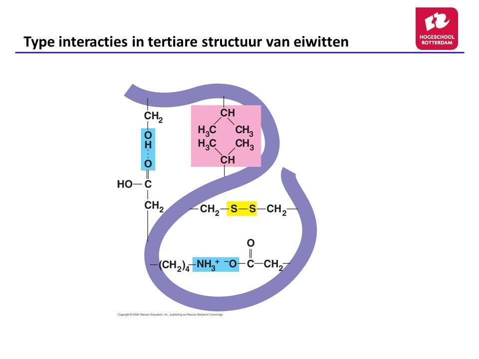 Type interacties in tertiare structuur van eiwitten Fig. 5-21f