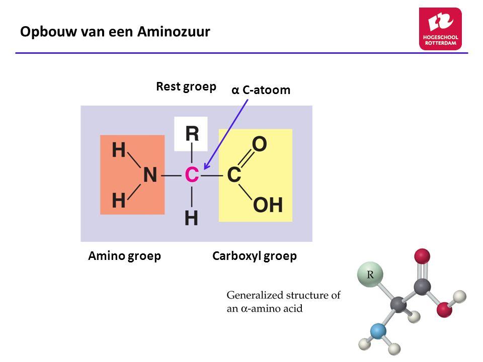 Aminozuren (1) - 20 verschillende aminozuren te onderscheiden in onze eiwitten - Indeling op basis van restgroep (zijketen): 15 AZ met een neutrale zijketen (polair of apolair) 2 AZ met carboxylzure groep in zijketen (zure AZ) 3 AZ met aminegroep in zijketen (basische AZ) - Naamgeving: triviale naam, 3-lettercode en 1-lettercode