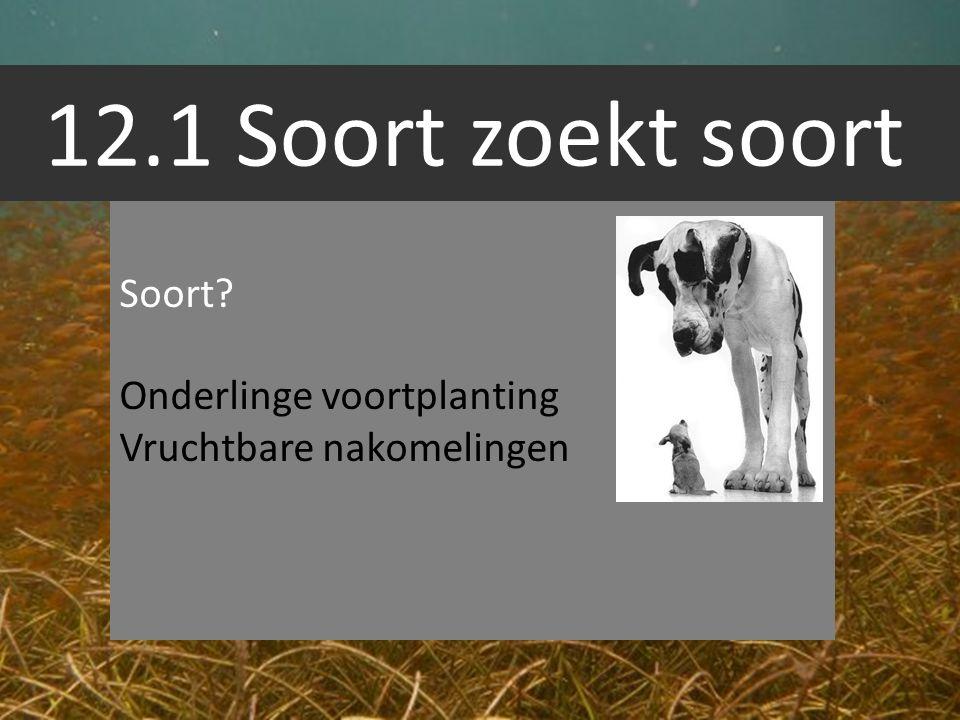 12.1 Soort zoekt soort Soort? Onderlinge voortplanting Vruchtbare nakomelingen