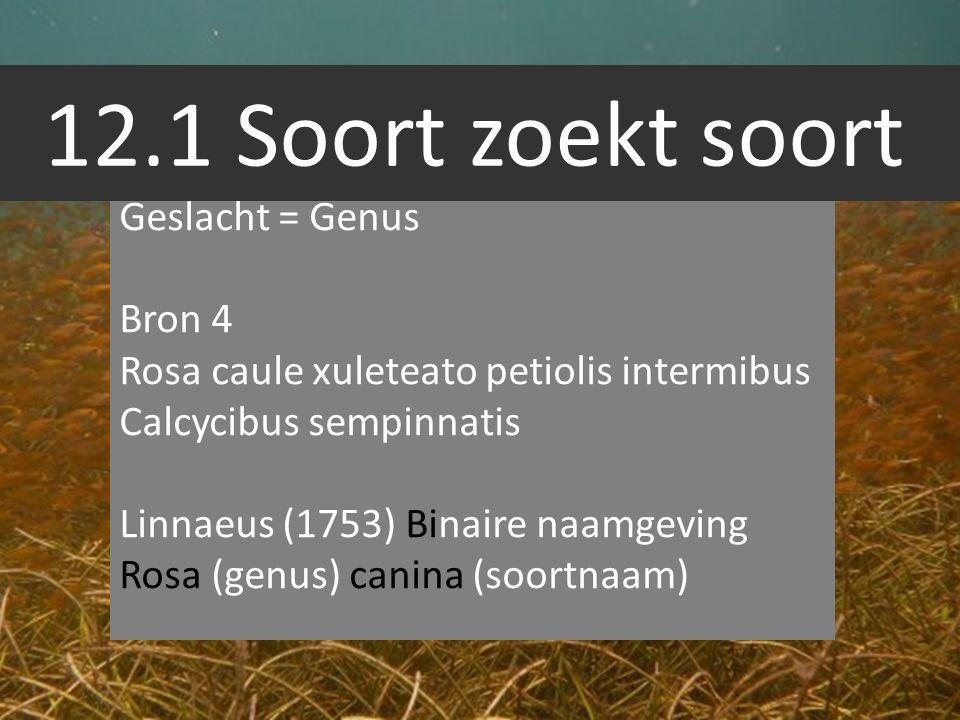 12.1 Soort zoekt soort Geslacht = Genus Bron 4 Rosa caule xuleteato petiolis intermibus Calcycibus sempinnatis Linnaeus (1753) Binaire naamgeving Rosa