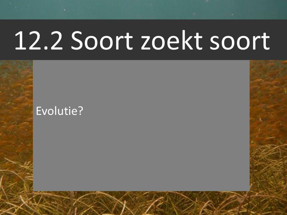 12.2 Soort zoekt soort Evolutie?