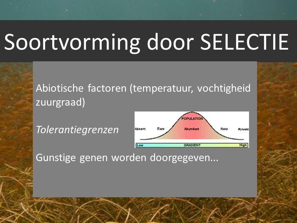 Soortvorming door SELECTIE Abiotische factoren (temperatuur, vochtigheid zuurgraad) Tolerantiegrenzen Gunstige genen worden doorgegeven...