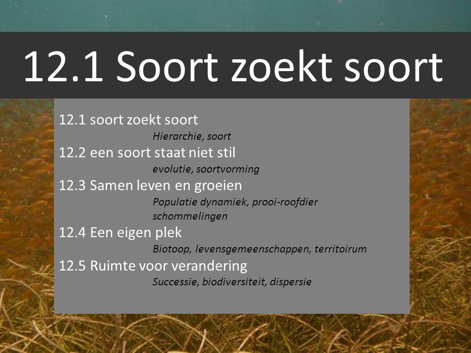 12.1 Soort zoekt soort 12.1 soort zoekt soort Hierarchie, soort 12.2 een soort staat niet stil evolutie, soortvorming 12.3 Samen leven en groeien Popu