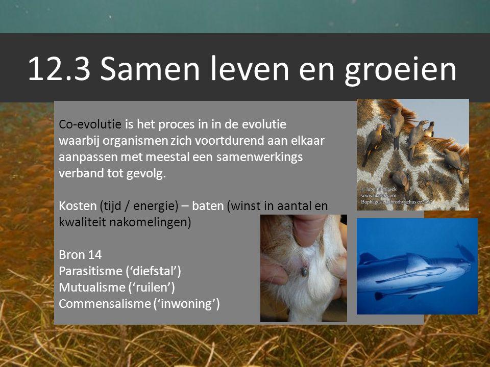 12.3 Samen leven en groeien Co-evolutie is het proces in in de evolutie waarbij organismen zich voortdurend aan elkaar aanpassen met meestal een samen