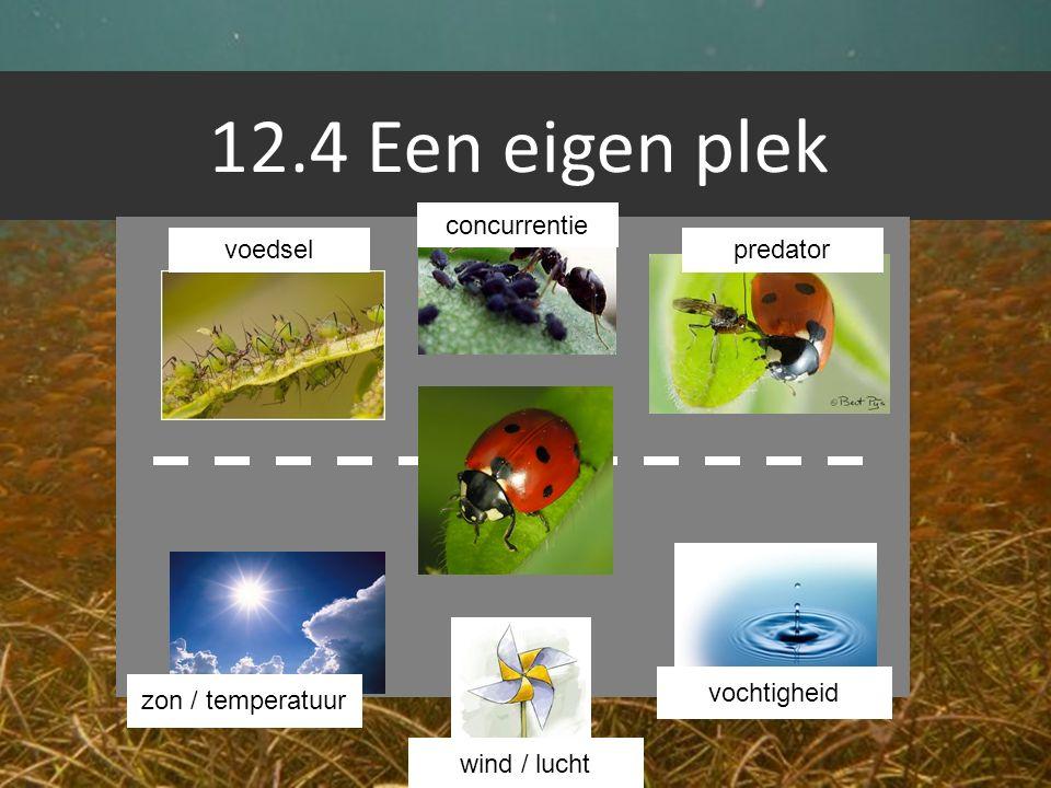 12.4 Een eigen plek voedsel concurrentie predator zon / temperatuur wind / lucht vochtigheid
