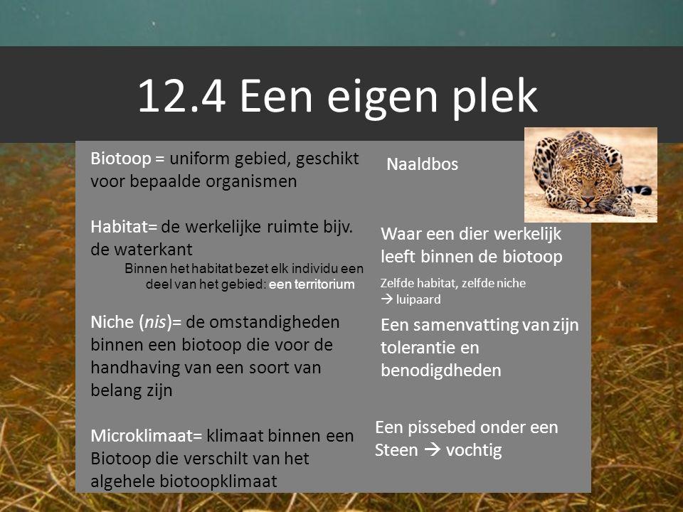 12.4 Een eigen plek Biotoop = uniform gebied, geschikt voor bepaalde organismen Habitat= de werkelijke ruimte bijv. de waterkant Binnen het habitat be