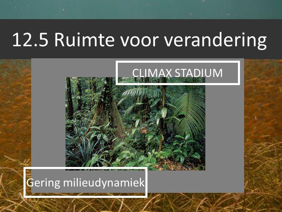 12.5 Ruimte voor verandering CLIMAX STADIUM Gering milieudynamiek