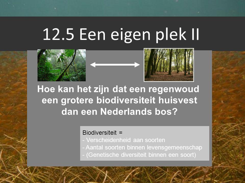 12.5 Een eigen plek II Hoe kan het zijn dat een regenwoud een grotere biodiversiteit huisvest dan een Nederlands bos? Biodiversiteit = - Verscheidenhe