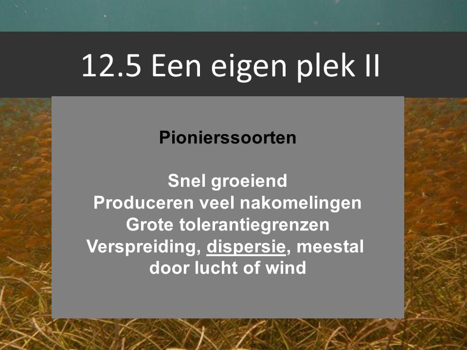 12.5 Een eigen plek II Pionierssoorten Snel groeiend Produceren veel nakomelingen Grote tolerantiegrenzen Verspreiding, dispersie, meestal door lucht