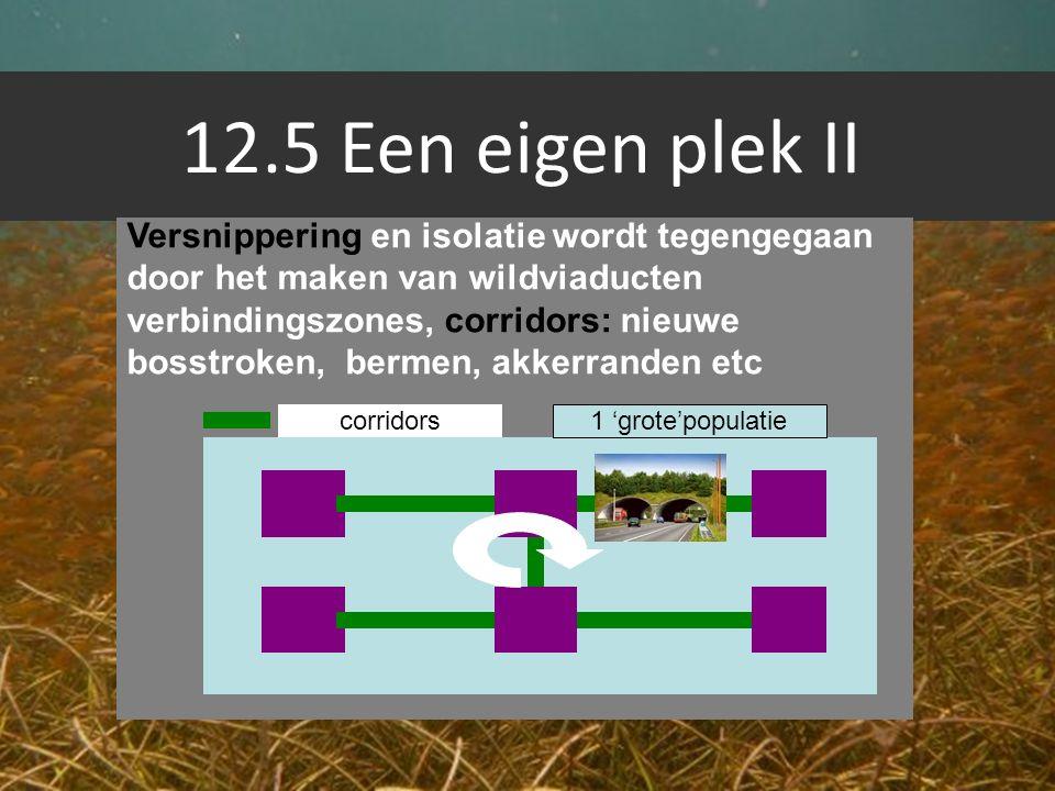 12.5 Een eigen plek II Versnippering en isolatie wordt tegengegaan door het maken van wildviaducten verbindingszones, corridors: nieuwe bosstroken, be