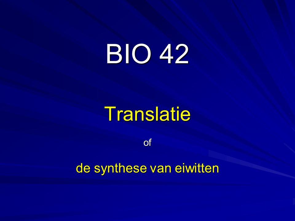 De gekoppelde transcriptie-translatie bij een prokaryoot in beeld.