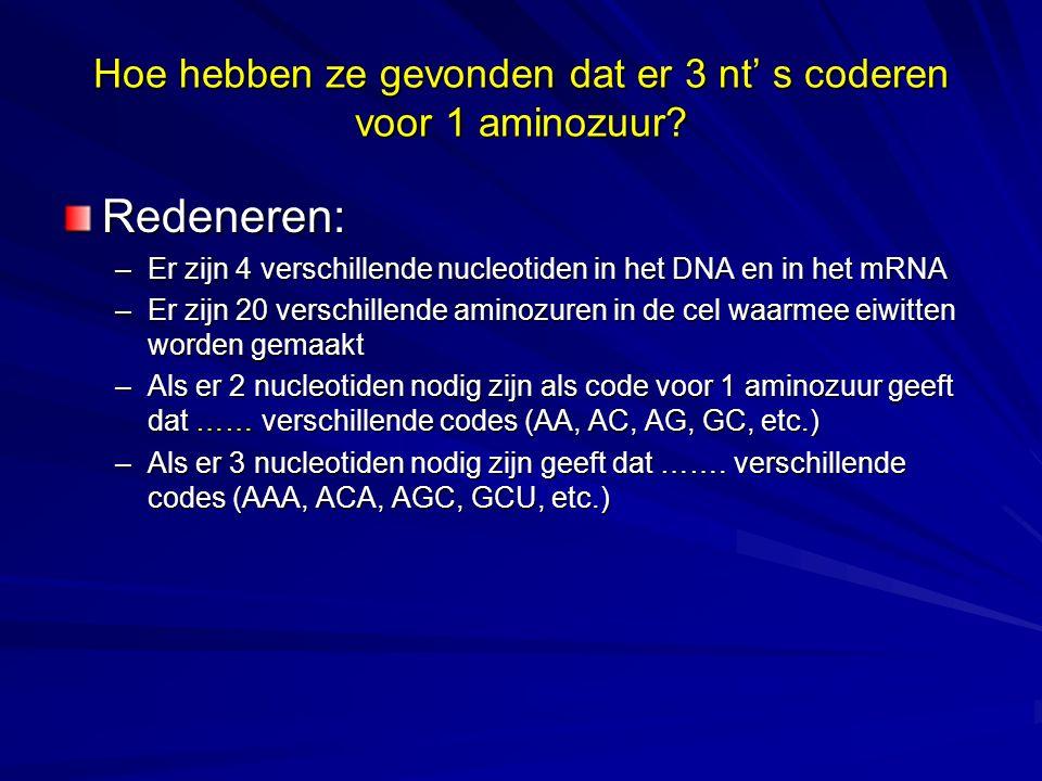 Hoe hebben ze gevonden dat er 3 nt' s coderen voor 1 aminozuur? Redeneren: –Er zijn 4 verschillende nucleotiden in het DNA en in het mRNA –Er zijn 20