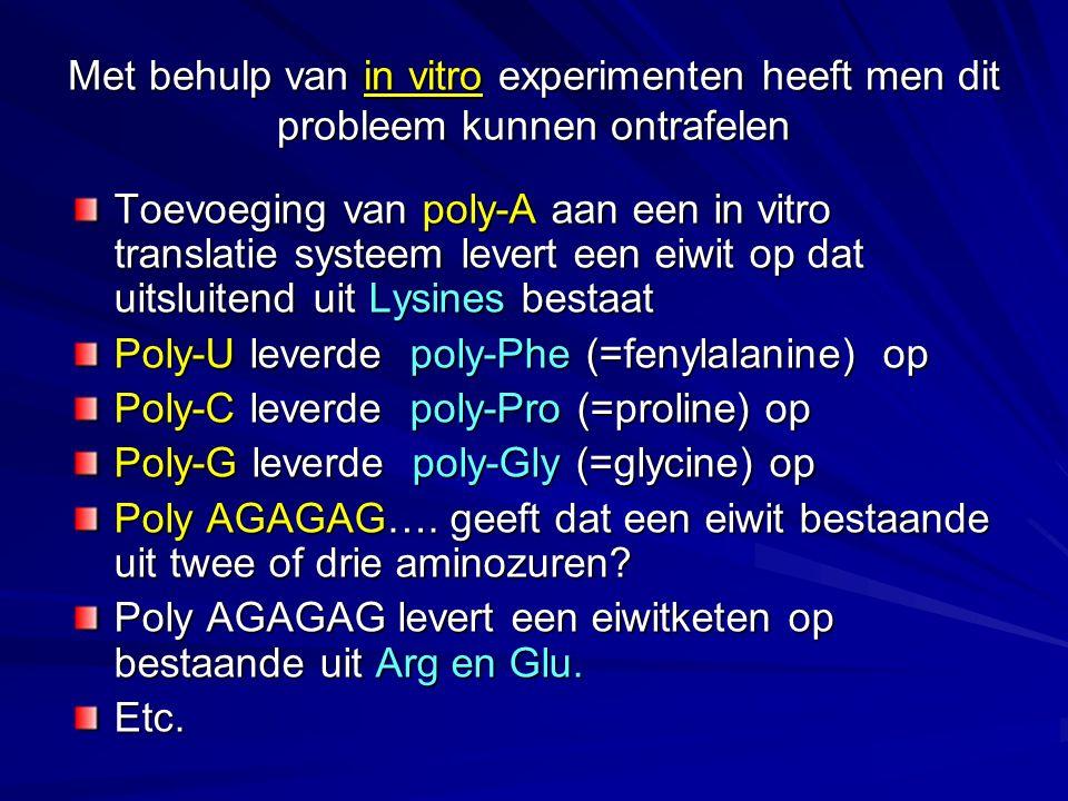 Een van die in vitro experimenten in beeld gebracht: Het betreft allemaal in vitro experimenten Conclusie: –3 nucleotiden coderen voor 1 aminozuur.