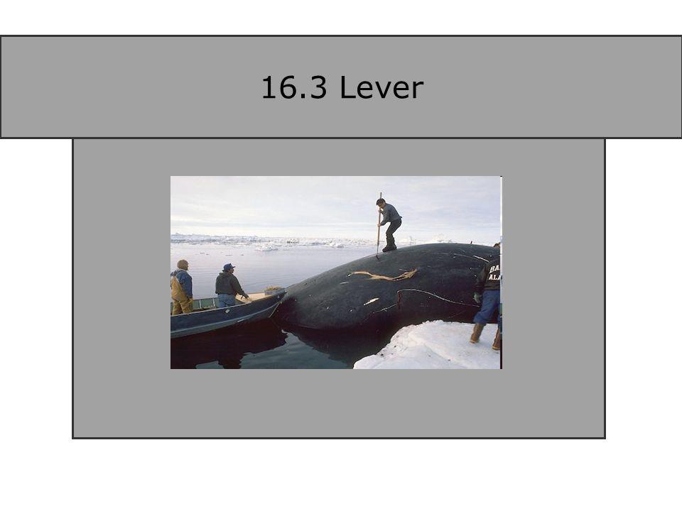 16.3 Lever