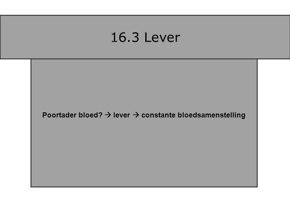 Poortader bloed?  lever  constante bloedsamenstelling 16.3 Lever