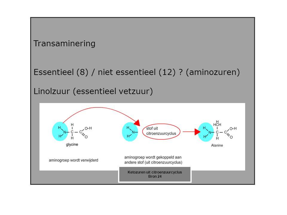 Transaminering Essentieel (8) / niet essentieel (12) .