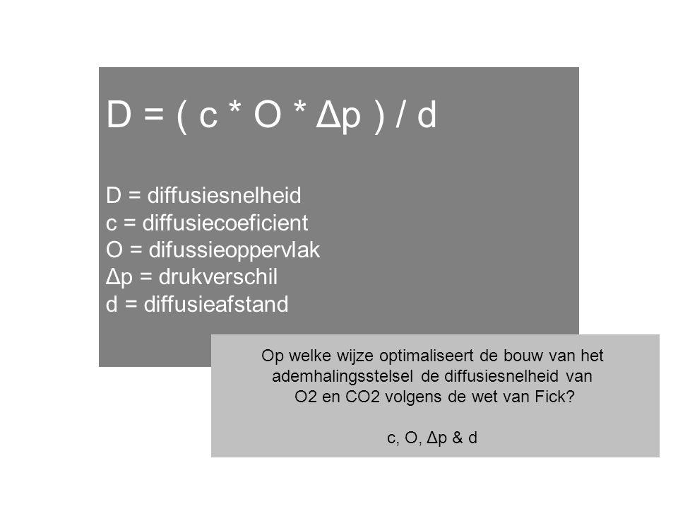 D = ( c * O * Δp ) / d D = diffusiesnelheid c = diffusiecoeficient O = difussieoppervlak Δp = drukverschil d = diffusieafstand Op welke wijze optimaliseert de bouw van het ademhalingsstelsel de diffusiesnelheid van O2 en CO2 volgens de wet van Fick.