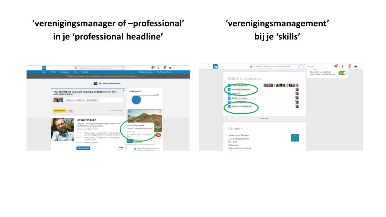 'verenigingsmanager of –professional' in je 'professional headline' 'verenigingsmanagement' bij je 'skills'