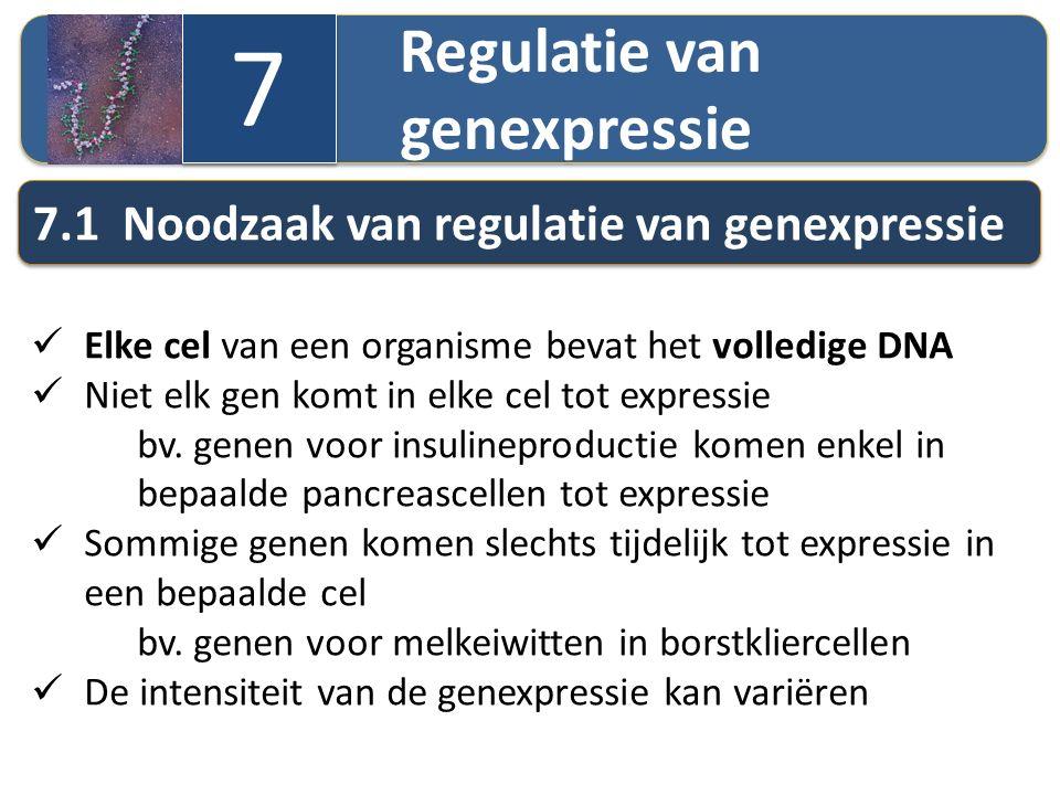 Regulatie van genexpressie 7 7 7.1 Noodzaak van regulatie van genexpressie Elke cel van een organisme bevat het volledige DNA Niet elk gen komt in elk
