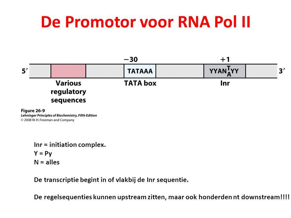 Gemeenschappelijke structuren in promotoren die door Pol II worden herkend (versimpelde versie). Inr = De Promotor voor RNA Pol II Inr = initiation co