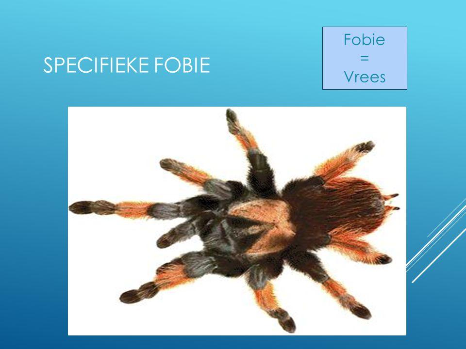 SPECIFIEKE FOBIE Fobie = Vrees