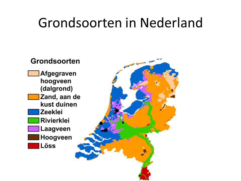 Grondsoorten in Nederland