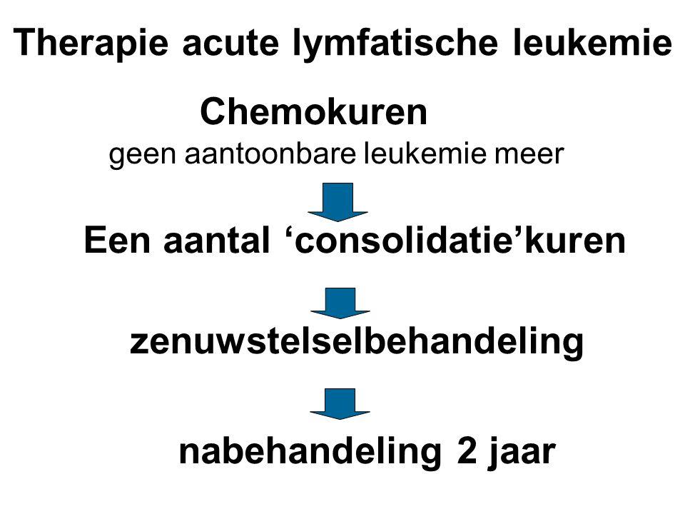 Therapie acute lymfatische leukemie Chemokuren geen aantoonbare leukemie meer Een aantal 'consolidatie'kuren zenuwstelselbehandeling nabehandeling 2 j