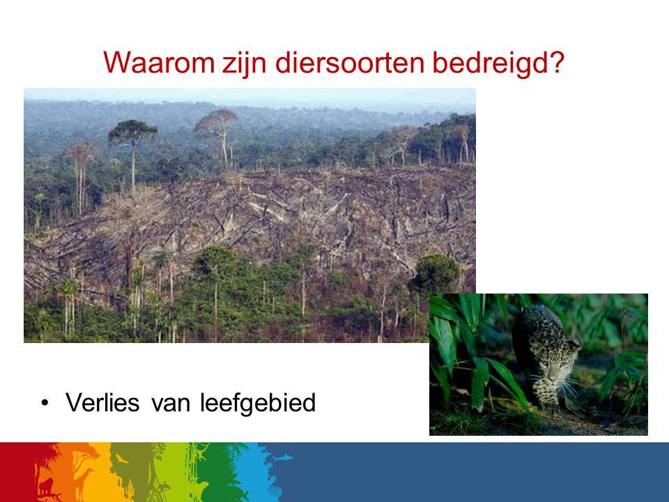 Waarom zijn diersoorten bedreigd? Verlies van leefgebied