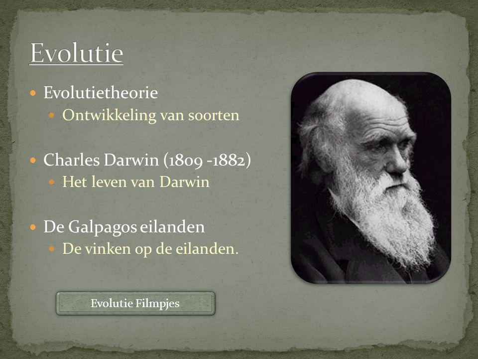 Evolutietheorie Ontwikkeling van soorten Charles Darwin (1809 -1882) Het leven van Darwin De Galpagos eilanden De vinken op de eilanden. Evolutie Film