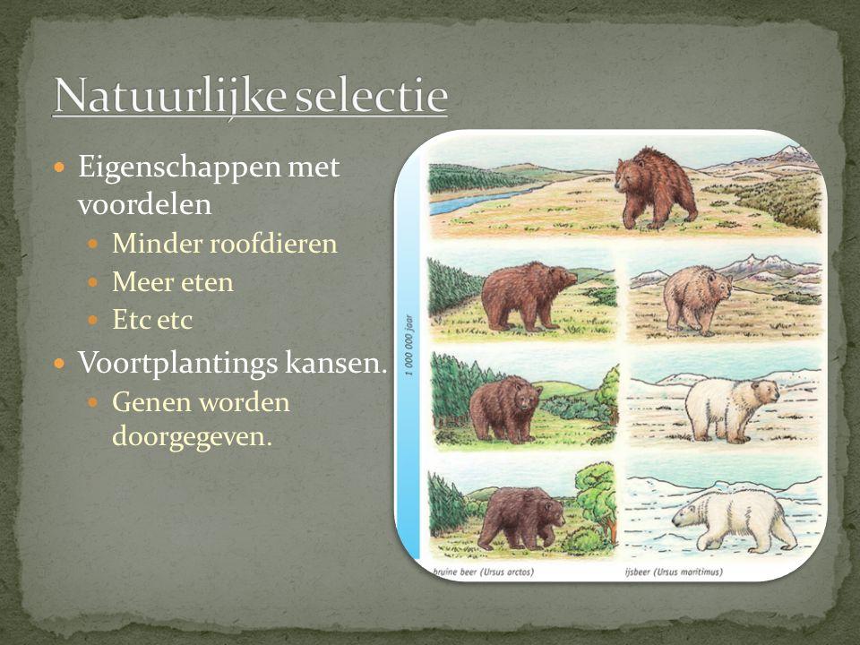 Eigenschappen met voordelen Minder roofdieren Meer eten Etc etc Voortplantings kansen. Genen worden doorgegeven.
