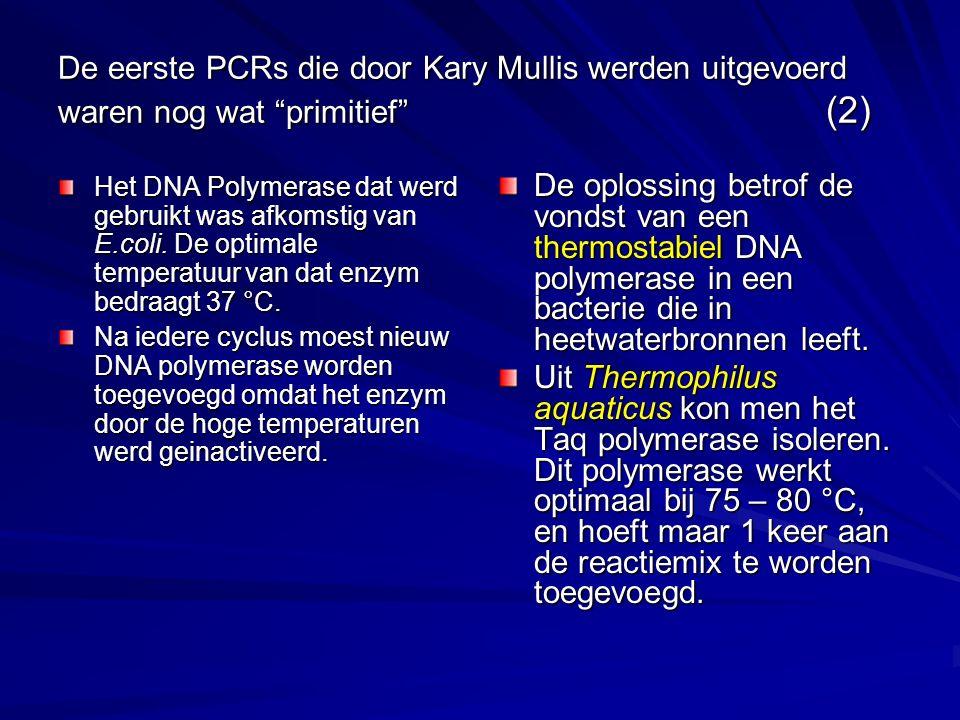 """De eerste PCRs die door Kary Mullis werden uitgevoerd waren nog wat """"primitief"""" (2) Het DNA Polymerase dat werd gebruikt was afkomstig van E.coli. De"""