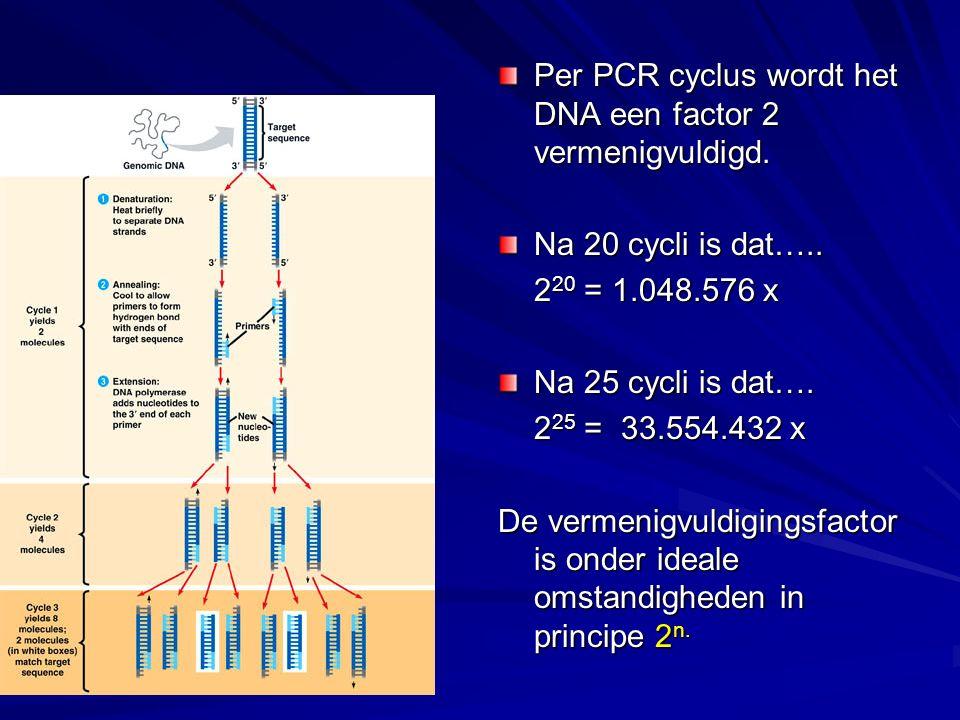 Per PCR cyclus wordt het DNA een factor 2 vermenigvuldigd. Na 20 cycli is dat….. 2 20 = 1.048.576 x Na 25 cycli is dat…. 2 25 = 33.554.432 x De vermen