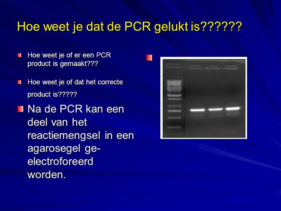 Hoe weet je dat de PCR gelukt is?????? Hoe weet je of er een PCR product is gemaakt??? Hoe weet je of dat het correcte product is????? Na de PCR kan e