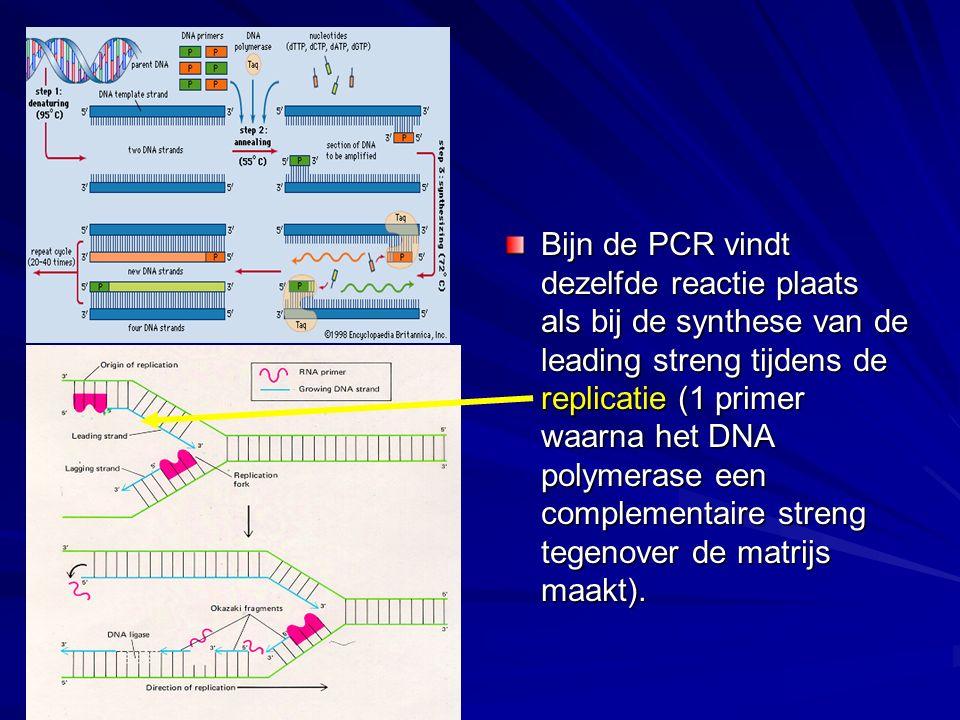 Bijn de PCR vindt dezelfde reactie plaats als bij de synthese van de leading streng tijdens de replicatie (1 primer waarna het DNA polymerase een comp